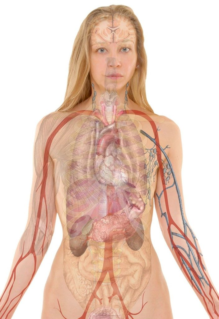 10 Most Common Lung Problems And Lung disease